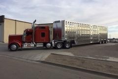Barkan trailer